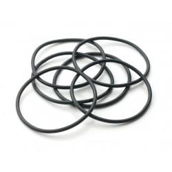 Set: o-ringen FTR140 (5 stuks)